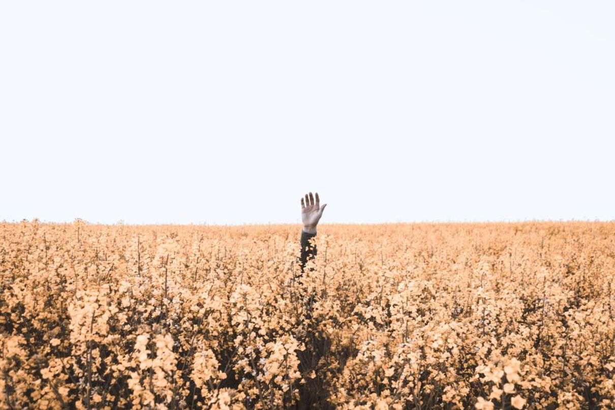 hand-waving-at-a-field